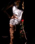 Róża 2.jpg